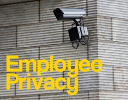 Employee Privacy: What are the rights of the employer?