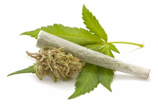 What Are Employers' Rights Regarding Cannabis (dagga) In The Workplace?